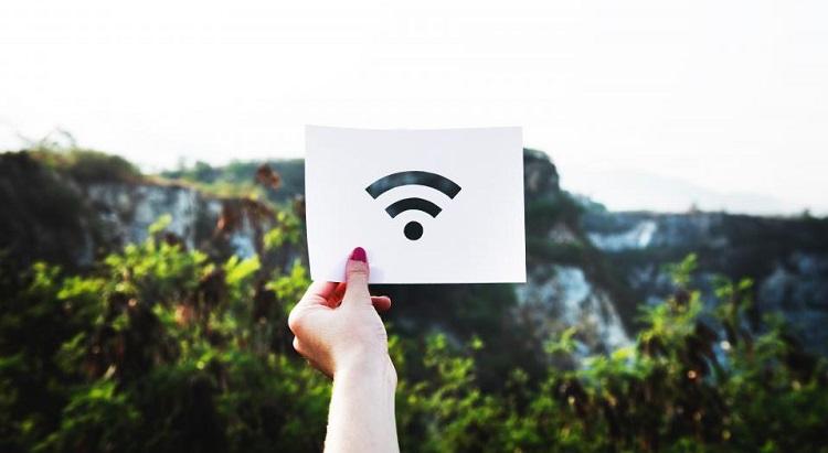 Wi-Fi symbol in nature