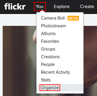 The Flickr Organize function