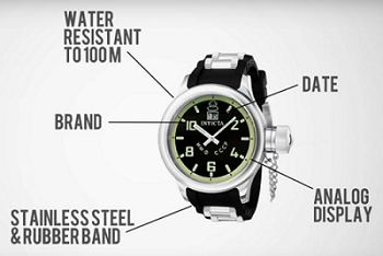 Descriptive information about a watch