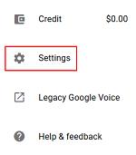 Google Voice settings