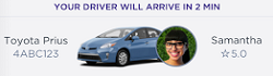 See your driver's details