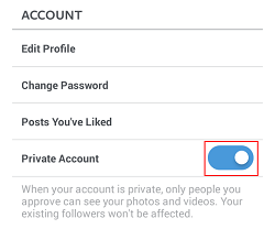 Instagram private posts