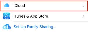 Select iCloud