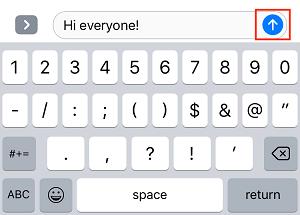 Send message button