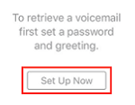 Set Up Voicemail button