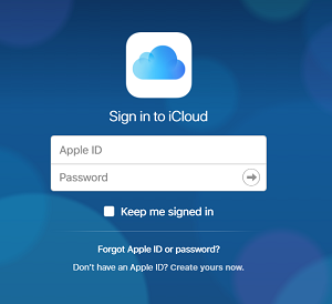 Apple ID sign in