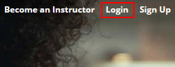 The Udemy log in button