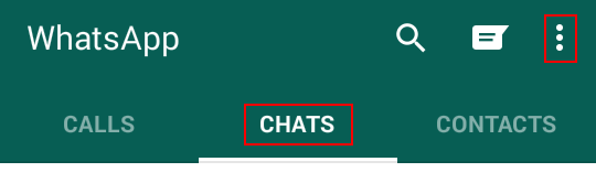 Extra WhatsApp chat options