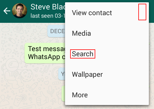 Starting a search within a WhatsApp chat