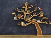 Ancestry.com Library Edition header