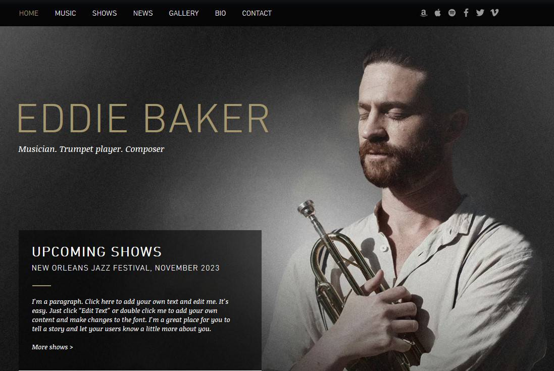 Sample of a music website template