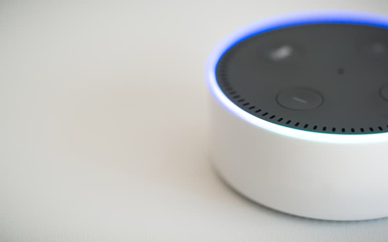 What Are Amazon Alexa and Echo? header (new)