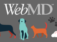 WebMD for Pets header