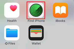 Find iPhone app icon