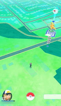 Area map in Pokemon Go