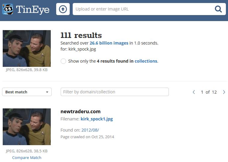 Screenshot of TinEye