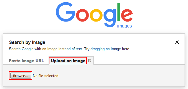 Conduct an image search using an uploaded image
