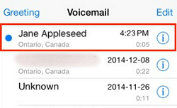 Choosing the voicemail message you wish to export