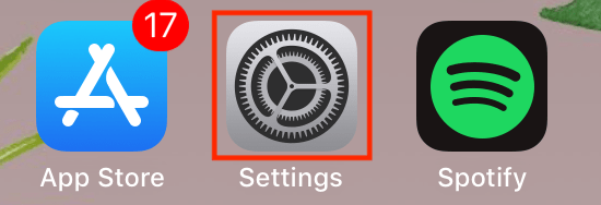 Accessing your iOS device settings