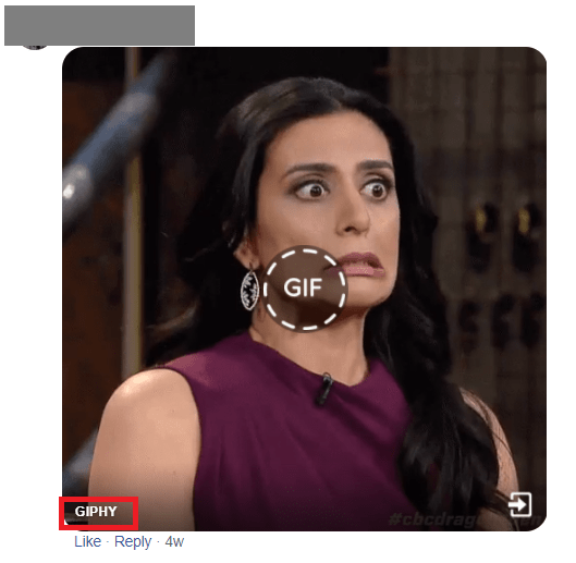 Go to the source website of the GIF