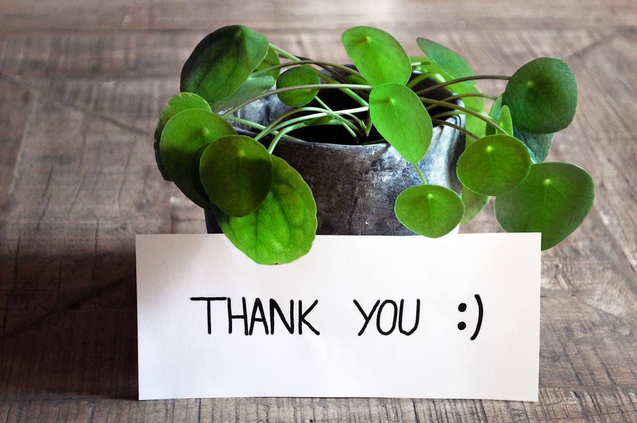 A thank you note with a potted plant, possibly a gift