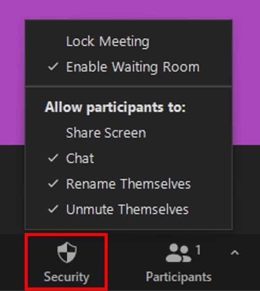 Security button with participant permission settings