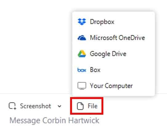 Chat with file sharing button and options