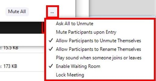 Participants window with more options